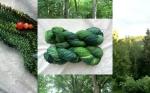green-wood-mountain